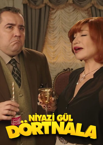 Niyazi G�l D�rtnala on Netflix UK