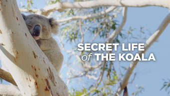 Secret Life of the Koala (2016)