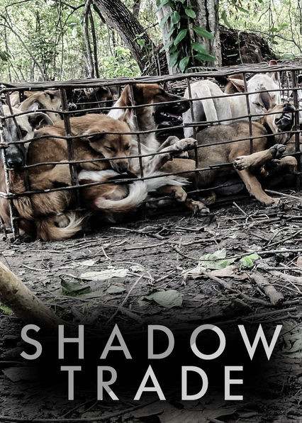 Shadow Trade on Netflix UK