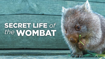 Secret Life of the Wombat (2016)