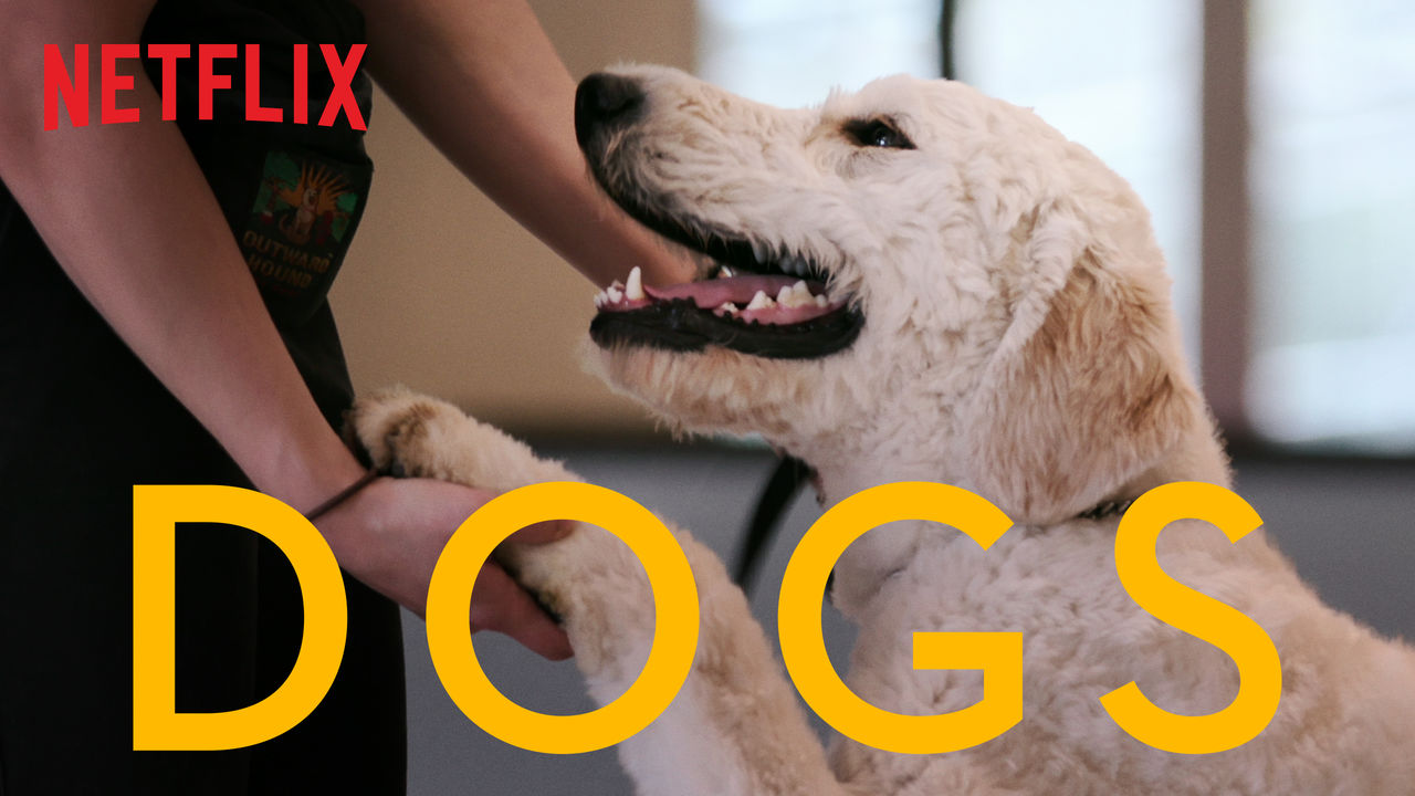 Dogs on Netflix UK
