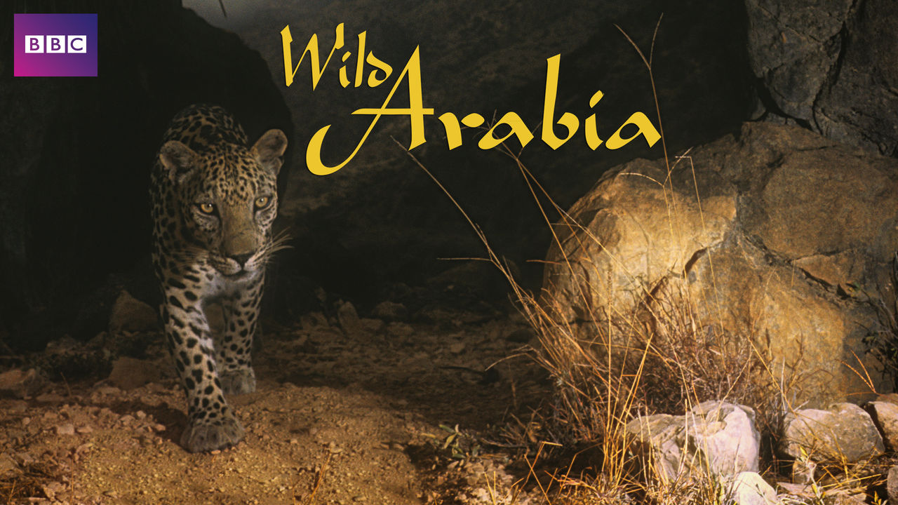 Is 'Wild Arabia' (2013) available to watch on UK Netflix ...