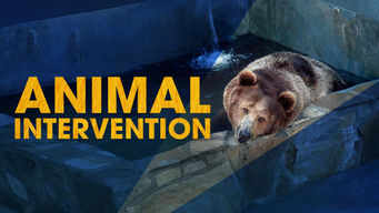 Animal Intervention (2012)