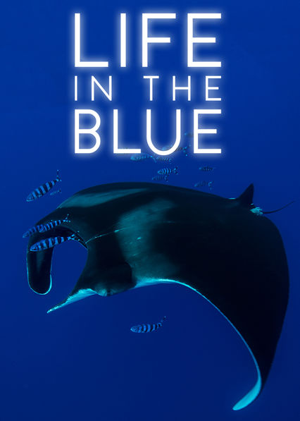 Life in the Blue on Netflix UK