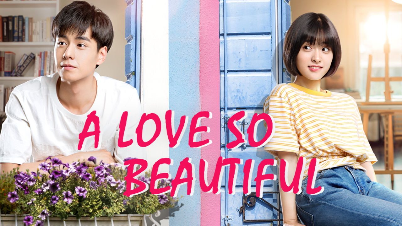 A Love So Beautiful on Netflix UK