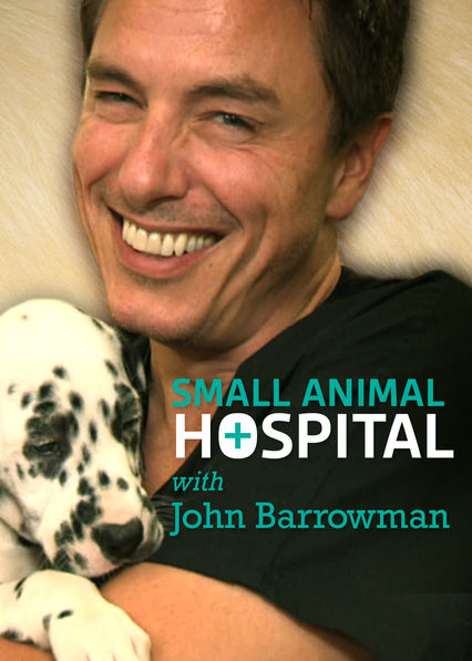 Small Animal Hospital on Netflix UK
