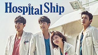 Hospital ship (2017)
