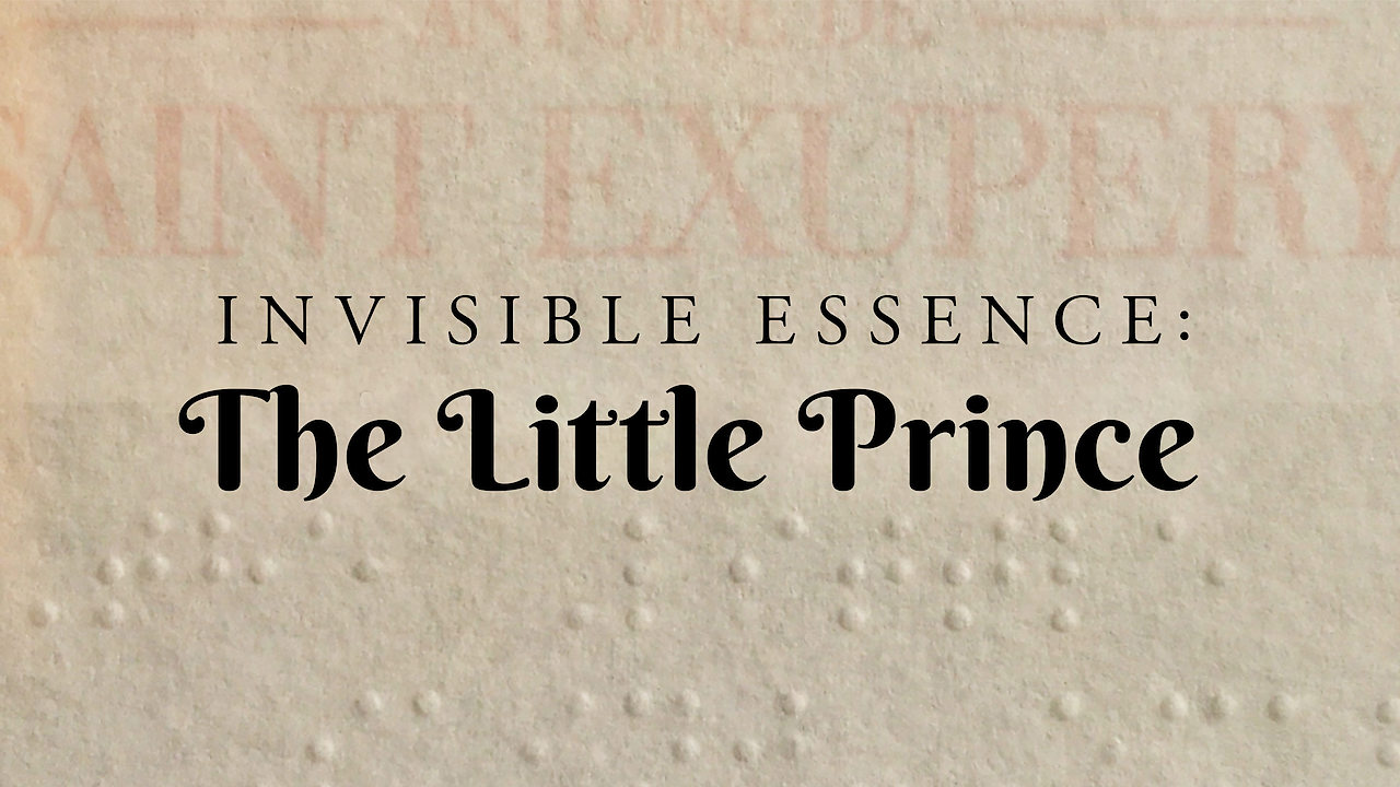 Invisible Essence: The Little Prince on Netflix UK