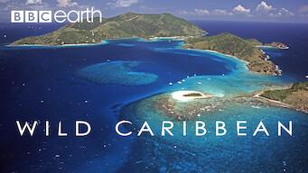 Wild Caribbean (2007)