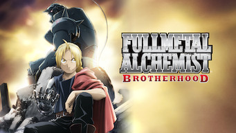 Fullmetal Alchemist: Brotherhood (2010)