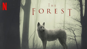 The Forest (2017)