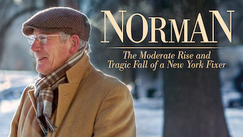 Norman: The Moderate Rise and Tragic Fall of a New York Fixer (2016)