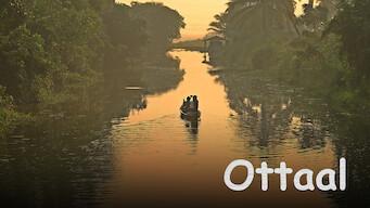 Ottaal (2014)