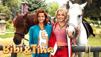 Bibi & Tina (2014)