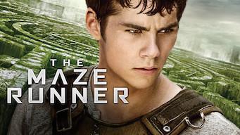 The Maze Runner (2014)