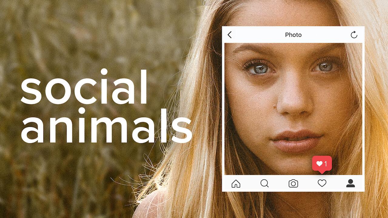 Social Animals on Netflix UK