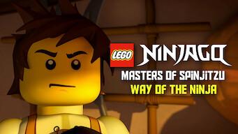 LEGO Ninjago: Masters of Spinjitzu: Way of the Ninja (2011)
