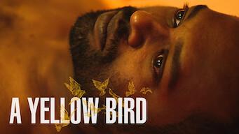 A Yellow Bird (2016)