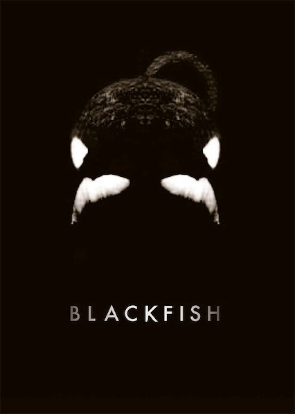 Blackfish on Netflix UK