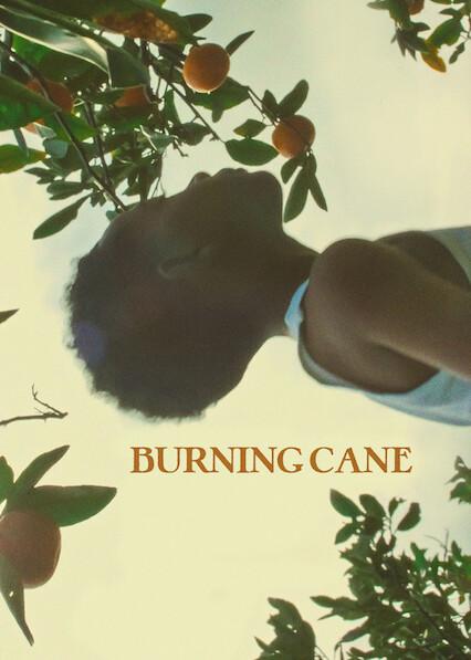 Burning Cane on Netflix UK